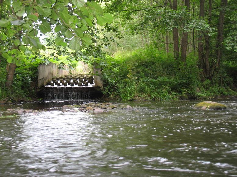 Plaukimas Baidarėmis Vokės Upe